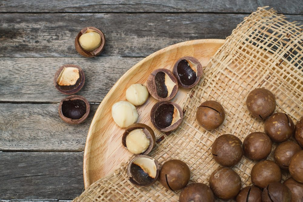 types of macadamia nuts