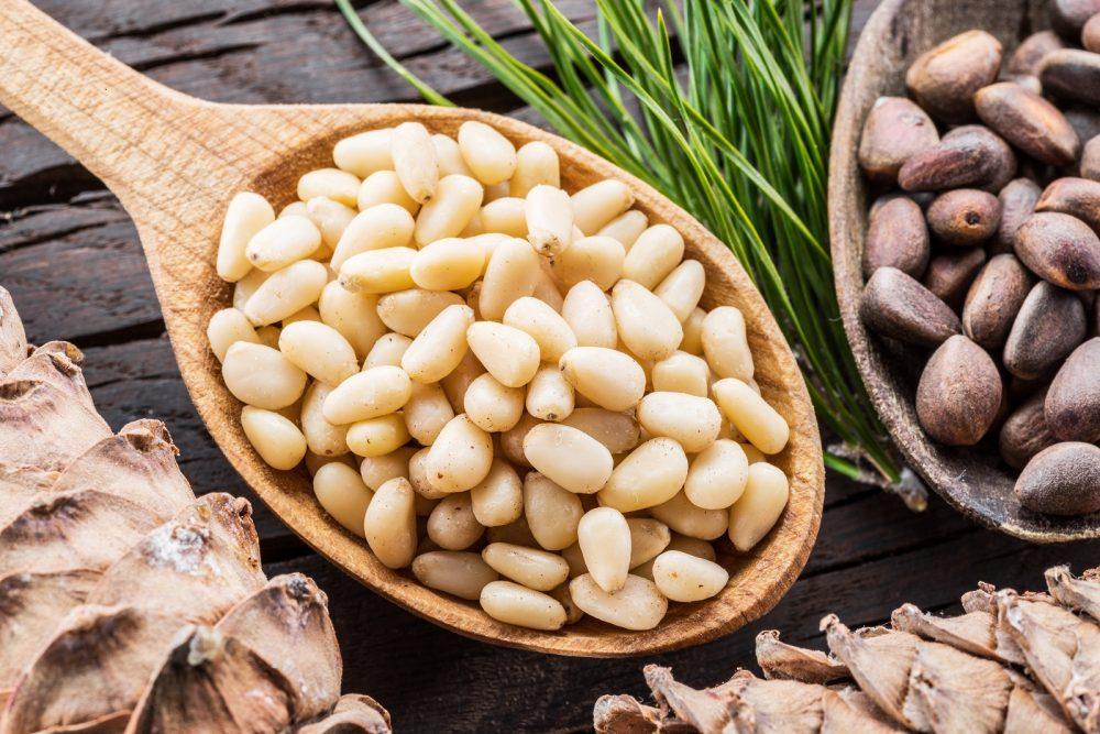 pine nut varieties