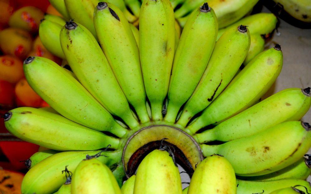 sugar bananas dandenong