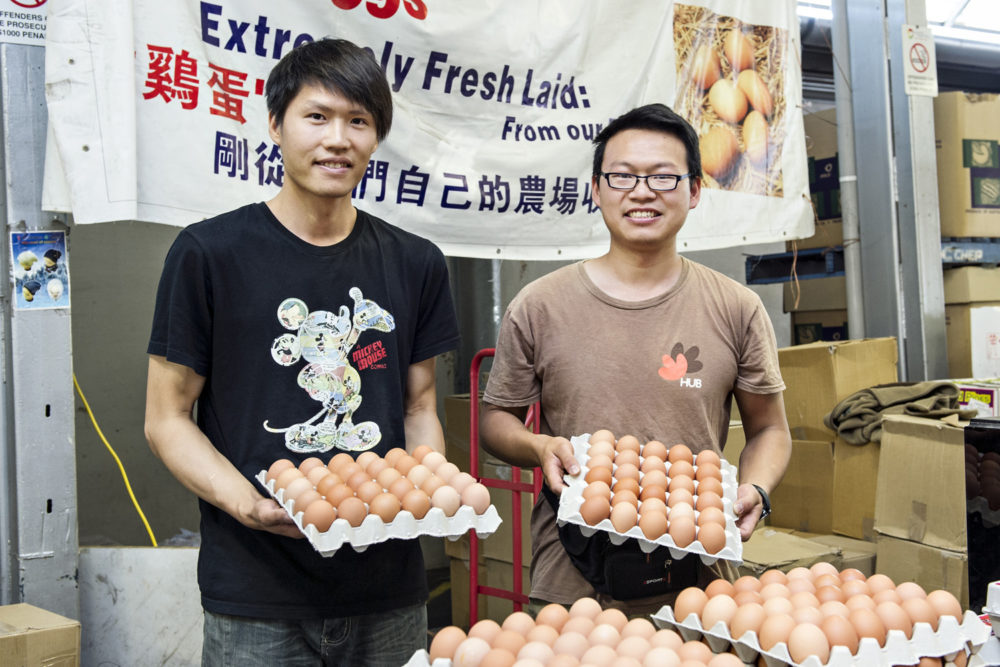 egg farm dandenong